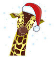 giraffe head with santa claus hat graphic vector image