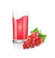 red grapes bunch and glass red wine vector image