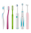 toothbrushes brush for teeth mechanical and vector image vector image