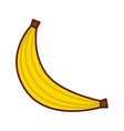 delicious fruit banana isolated icon design vector image vector image