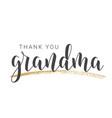 handwritten lettering thank you grandma vector image vector image