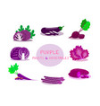 purple fruits and vegetables on white background vector image
