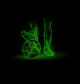 soccer green neon background vector image vector image