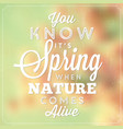 spring poster vector image