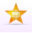 Star guarantee 100 vector image