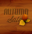 Autumn sale wooden background vector image vector image