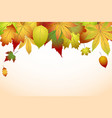 beautiful colourful autumn leaves back to school vector image vector image