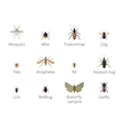 insect parasites vector image