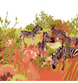 lions hunting scene on a zebras surrounded by vector image