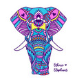 pattern with elephant geometric circle element vector image vector image