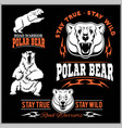 polar bears - set vector image vector image