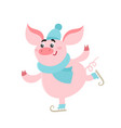 cartoon pig skating in hat and scarf isolated on vector image
