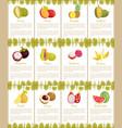 durian and mango mangosteen posters set vector image