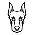 mascot stylized doberman head vector image