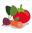 organic healthy food vegetables nutrition image vector image vector image