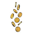 sketch falling gold coins vector image vector image