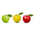 three color apples vector image vector image