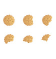 bitten chip cookie set vector image vector image