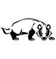 european badger logo vector image vector image