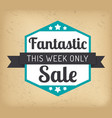 fantastic sale this week only promo banner vector image vector image
