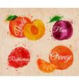 Fruit watercolor peach raspberry plum orange in vector image vector image