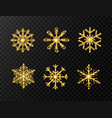 glitter gold snowflakes set on transparent vector image vector image