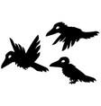 small crow cartoon character stencil vector image