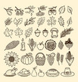 a set of autumn elements of nature handmade vector image vector image