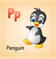 animals alphabet p is for penguin vector image vector image