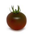 black tomato kumato on a white background vector image vector image