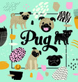 cute dogs design childish background with pug vector image