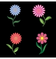 Flower icons set Chamomile daisy Floral symbols vector image vector image