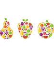 fruit forms with fruits template vector image