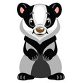 cartoon badger vector image vector image