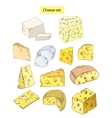 cheese set detailed vector image