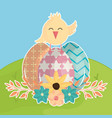 eggs painted with chick in the field happy easter vector image