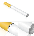electronic cigarette vector image vector image
