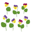 Forest Violets On White Background Isolated Object vector image vector image
