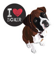 i love boxer vector image