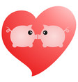 love pigs vector image