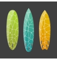 set decorated colorful surfboards vector image vector image
