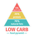 the low carb diet food pyramid vector image