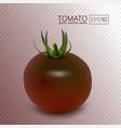 black tomato kumato on a transparent background vector image vector image