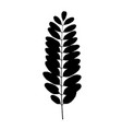 black tree leaf silhouette vector image vector image