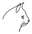 cat head drawn continuous lines vector image vector image