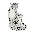 snow leopards isolated on white vector image vector image