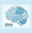 brain anatomy and outline stroke frontal vector image