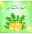 Christmas card with two balls vector image vector image