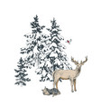 deer familie in winter forest vector image vector image