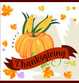 pumpkin with two corn cobs in green leaves autumn vector image